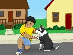Boy caring for hurt dog: flashcards, phonics websites, reading skills ladders, interactive learning, homeschoolers, reading help for sensory processing disorder, alphabet, learning children, kindergarten,