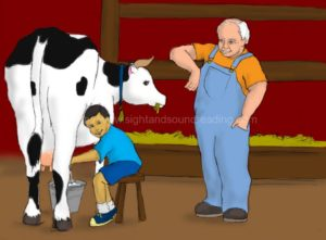 boy milking a cow, basic sight vocabulary, education, multisensory methods to teach reading, educational games, activity books, how to read, video tutor learn to read, phonics videos, learning