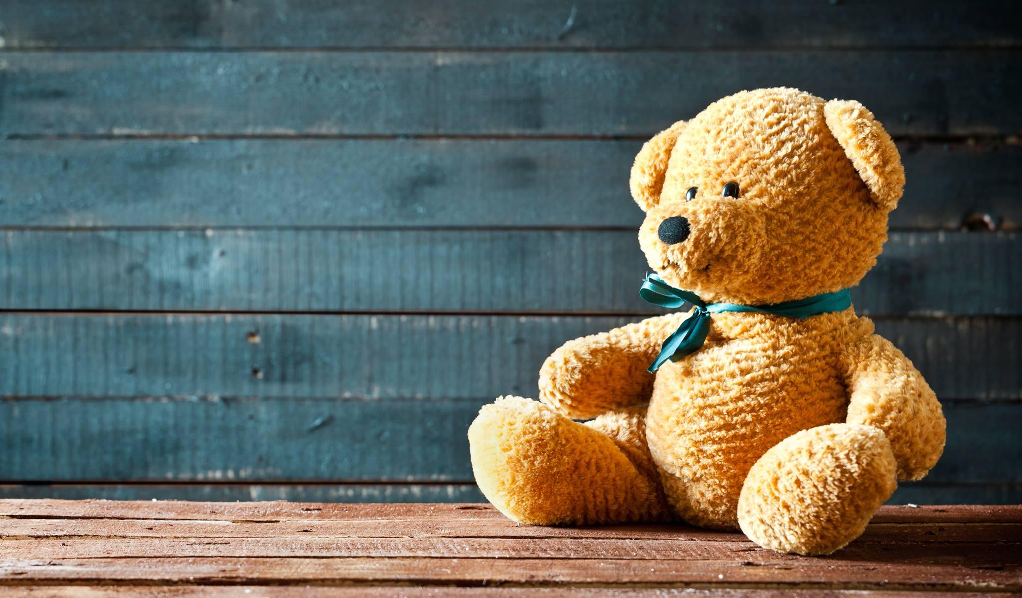teddy bear picnic activities for kindergarten