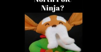 What is a North Pole Ninja?