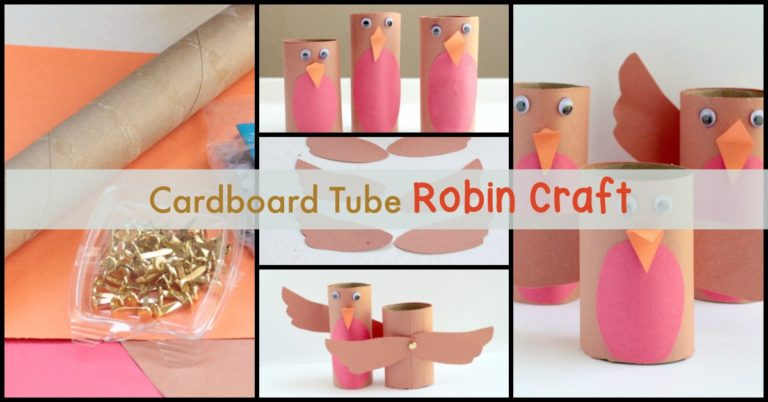 Cardboard Tube Robin Craft