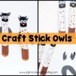 Craft Stick Owls