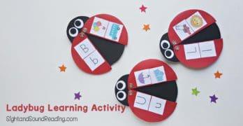 Adorable Ladybug Learning Activity for preschool or kindergarten