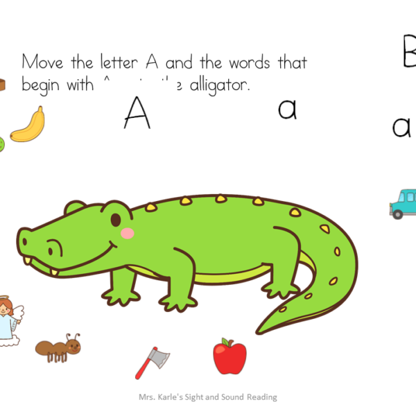 Beginning Sound Distance Learning Activity