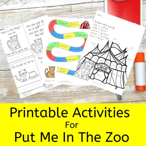 Put Me in the Zoo Activities