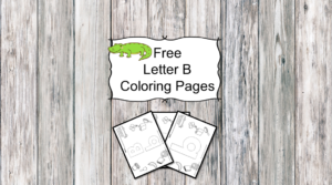 Letter Z Coloring Pages -Free letter Coloring Pages for Preschool or Kindergarten