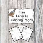 Letter Q Coloring Pages -Free letter Coloring Pages for Preschool or Kindergarten