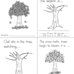 Weather and seasons lesson pack for kindergarten or preschool or 1st grade